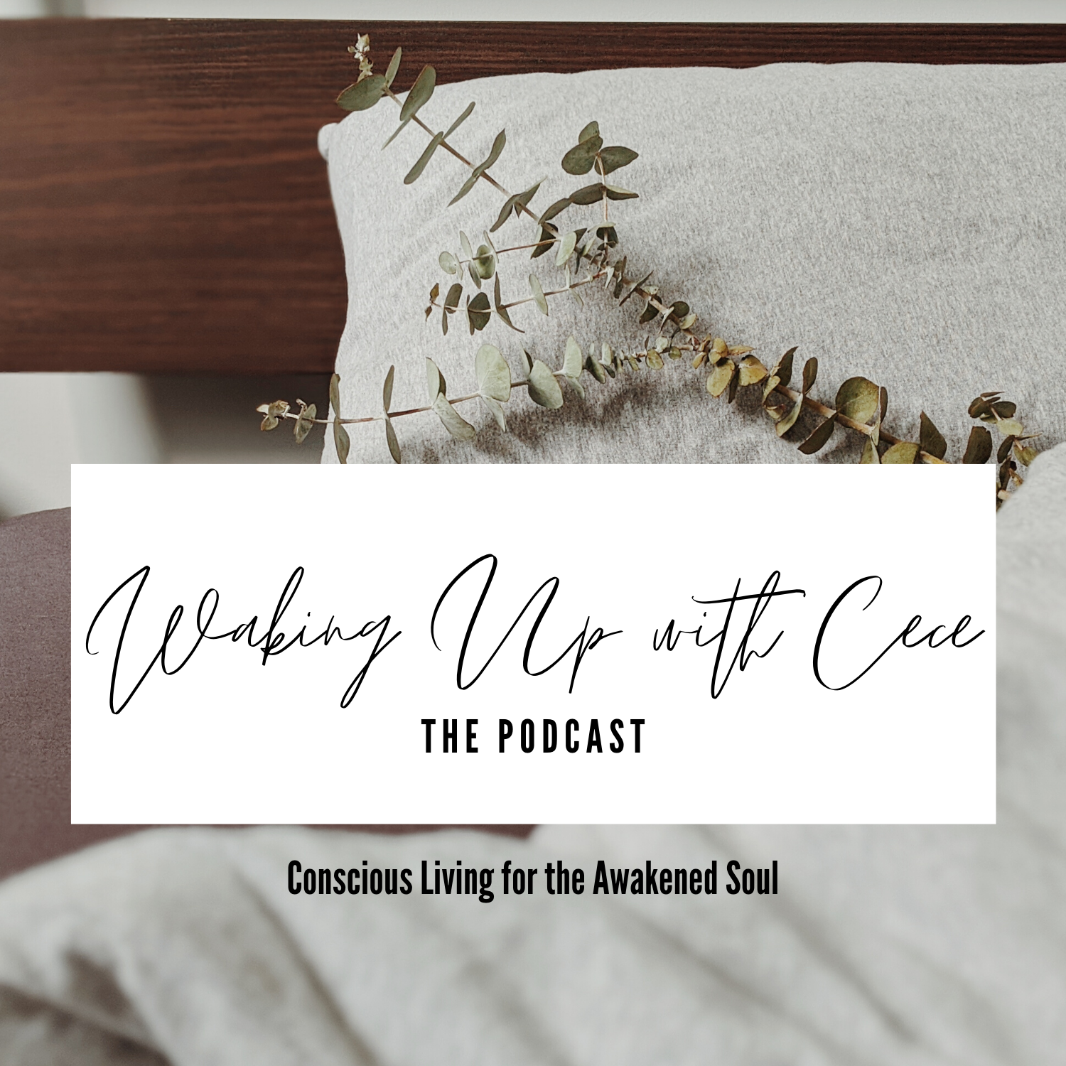 Waking Up with Cece the podcast conscious living for the awakened soul